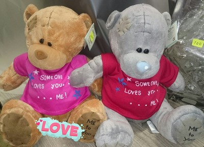teddy-each-g01
