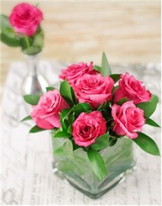 pink-roses-arranged-in-glass-box-v06
