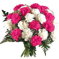 bunch-of-carnations-f20